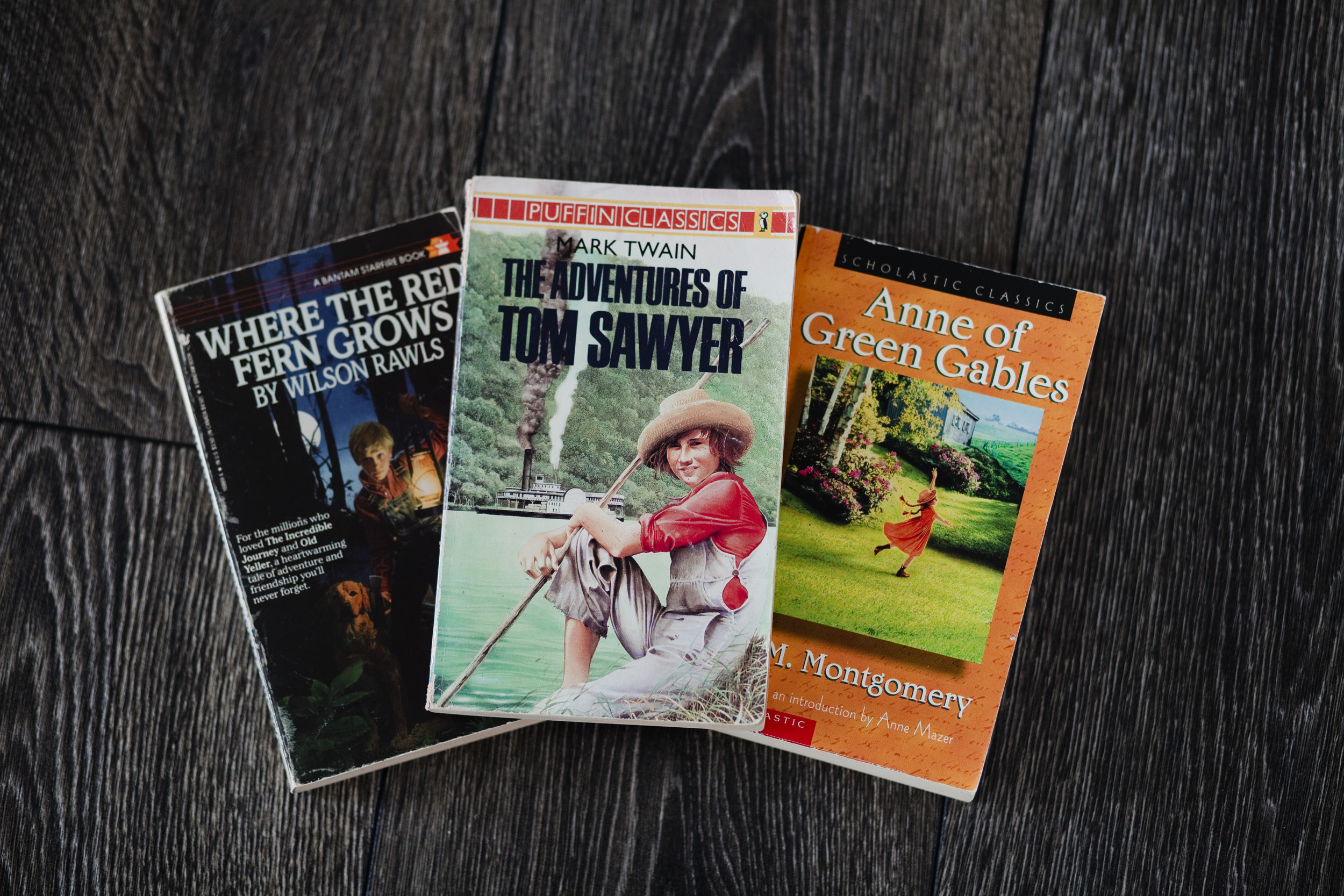 Classic Novels for grades 5 and 6. Perfect for read alouds or for them to read on their own.
