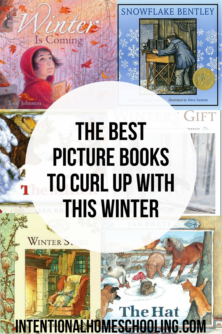 The Best Picture Books to Curl Up With This Winter