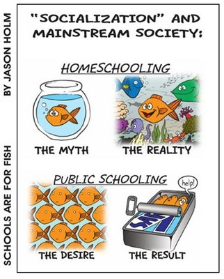 Homeschool Myth: Homeschoolers are Socially Awkward - tackling the issue of homeschooling and socialization