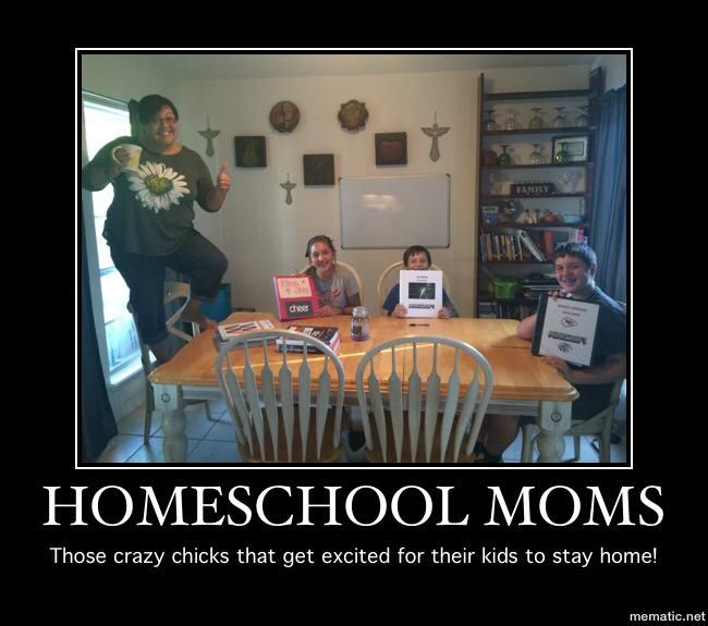 Homeschool Memes to Brighten Your Day - Intentional