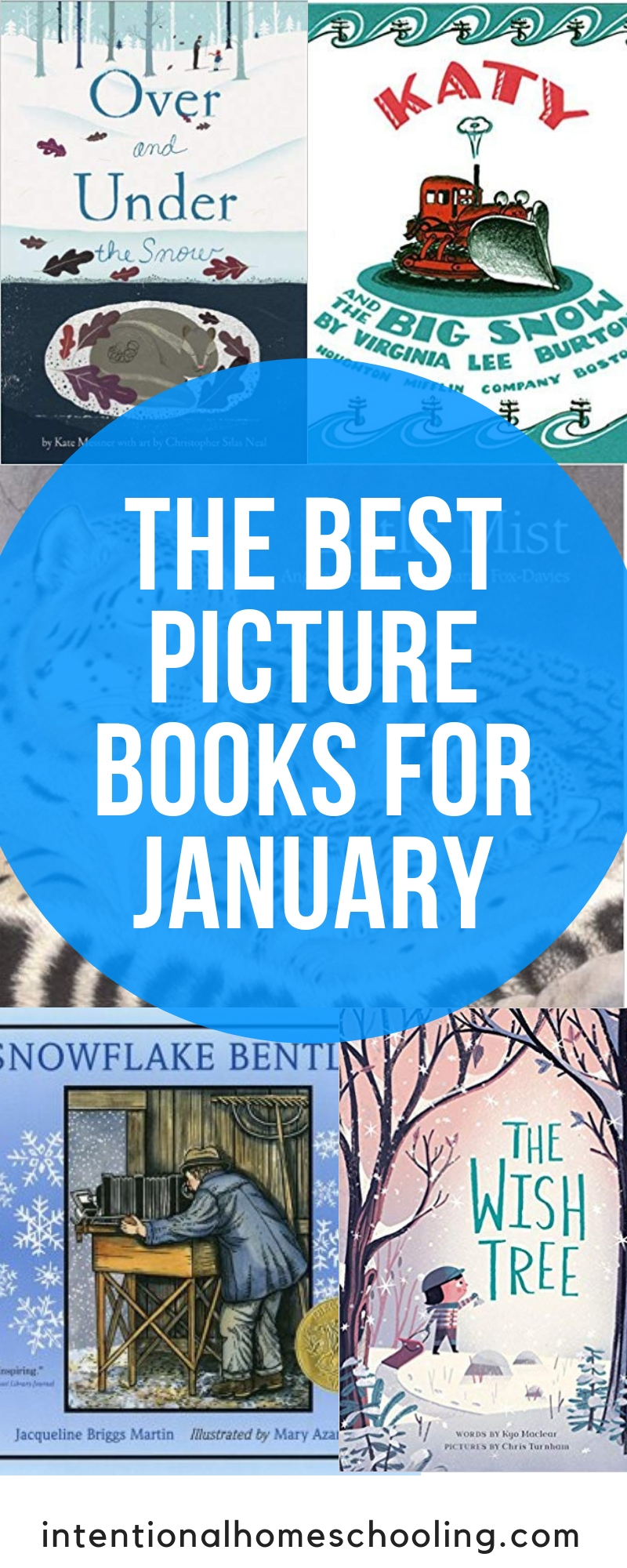 The Best Picture Books for January - books about snow and all things winter
