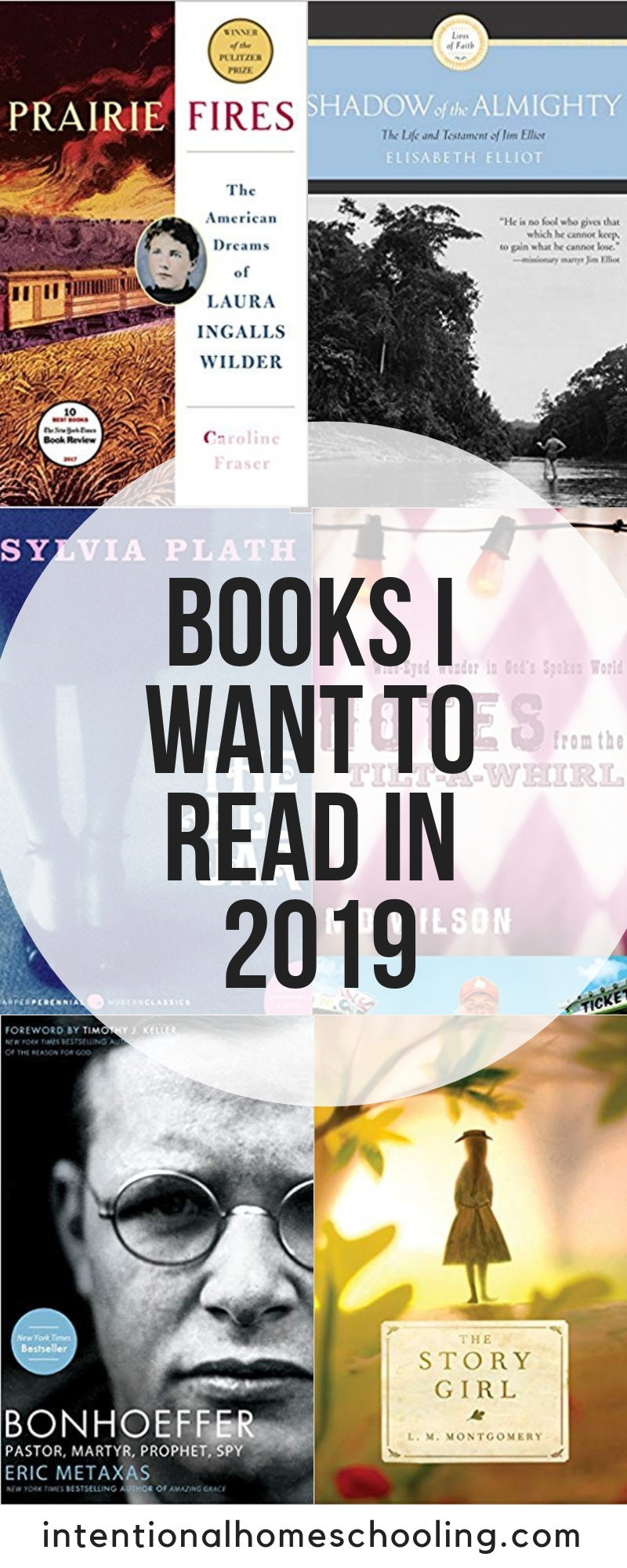 Books I want to read in 2019 - non-fiction, biographies, fiction and classics.