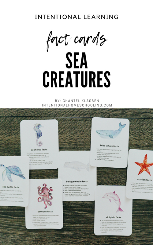 Free Sea Creature Fact Card Printable Downloads
