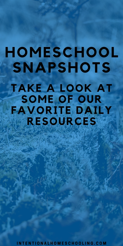 Homeschool Snapshots - A look into our favorite resources and daily homeschool life