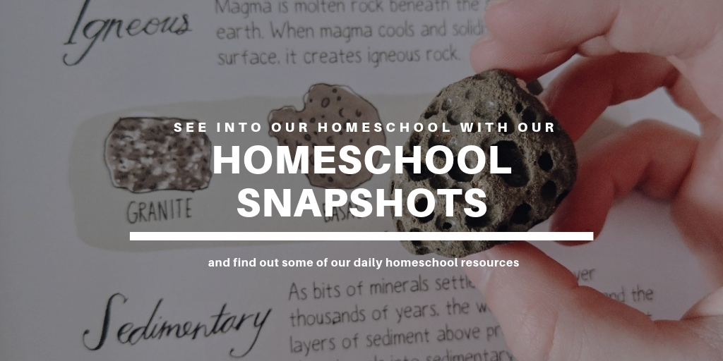 Homeschool Snapshots - a daily look into our homeschool