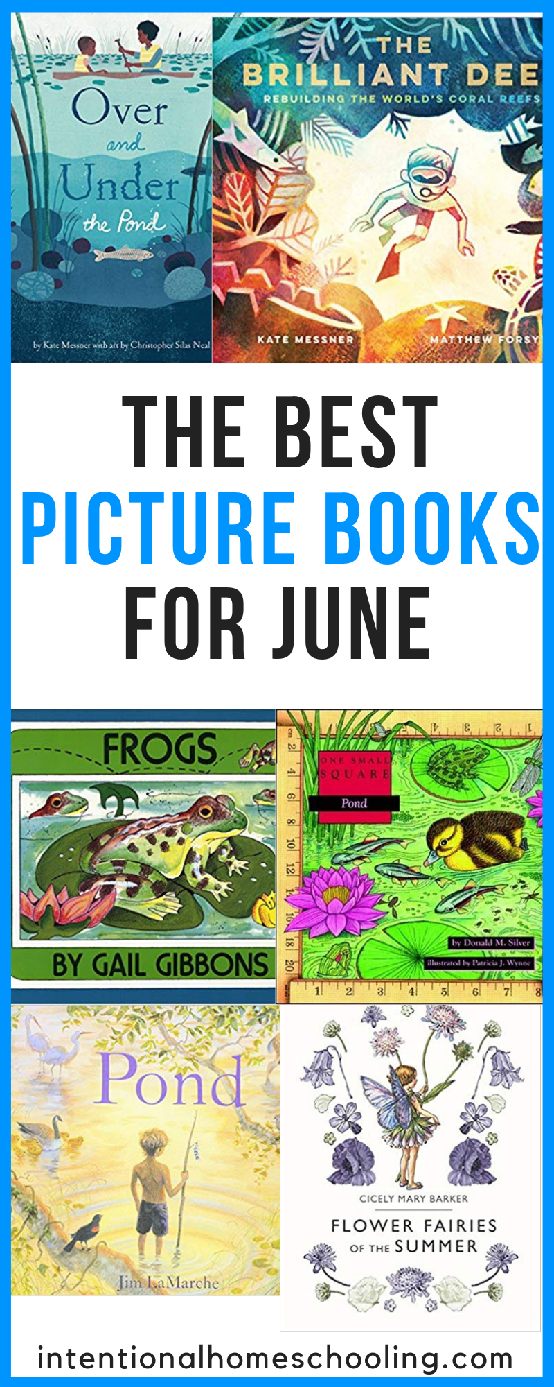 The Best Picture Books for June - summer picture books and water picture books