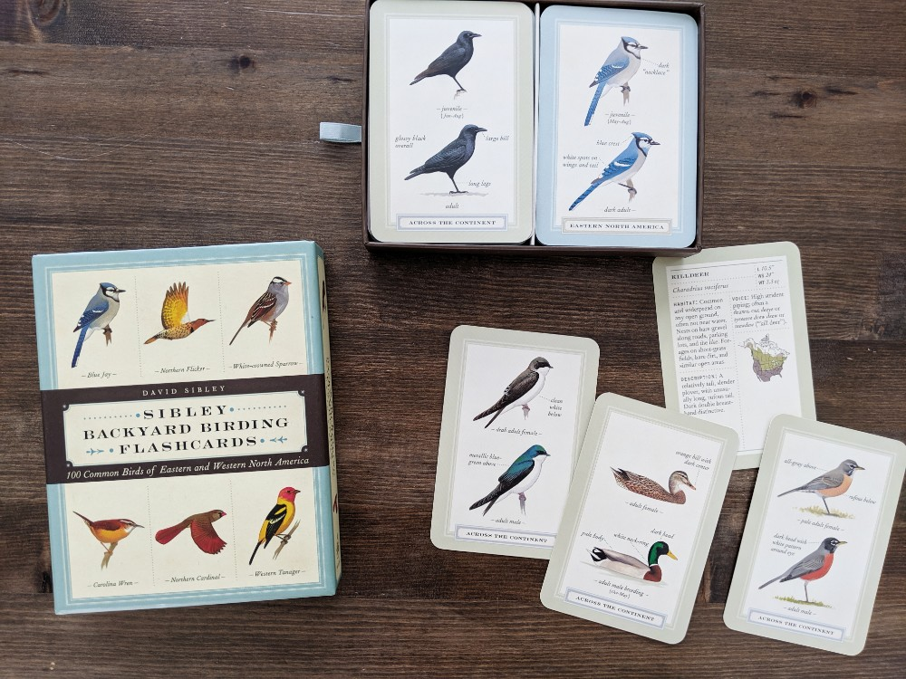Great Nature Study Resources - Backyard Birding Flashcards