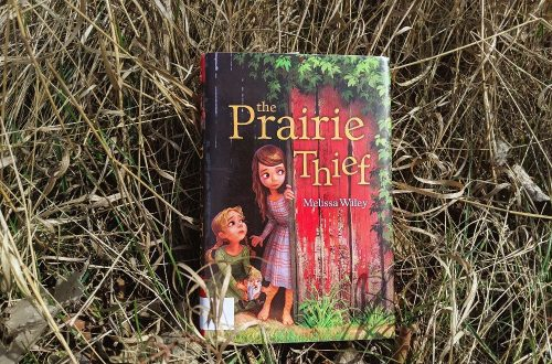 The Prairie Thief Book Review - fantasy for elementary and middle grade