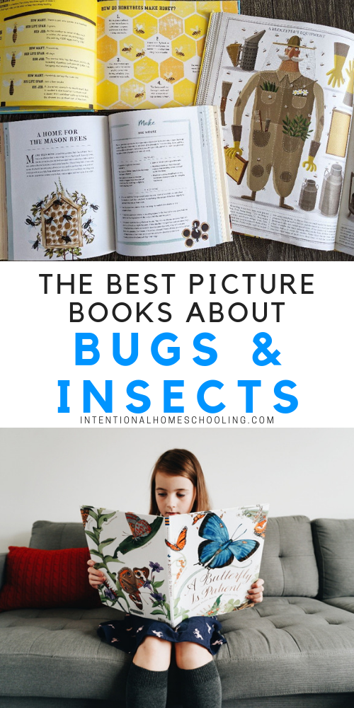 The best picture books and informative books about bugs and insects for kids