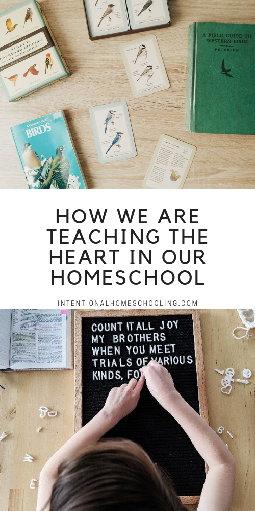 Our Summer Homeschooling - Heartschooling Ideal Rhythm