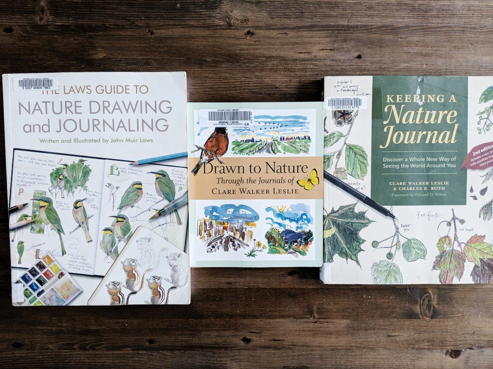 The Best Nature Study Resources - Nature Journaling books