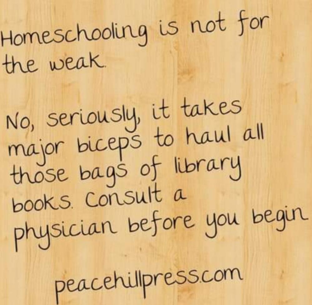 Hilarious Homeschool Memes
