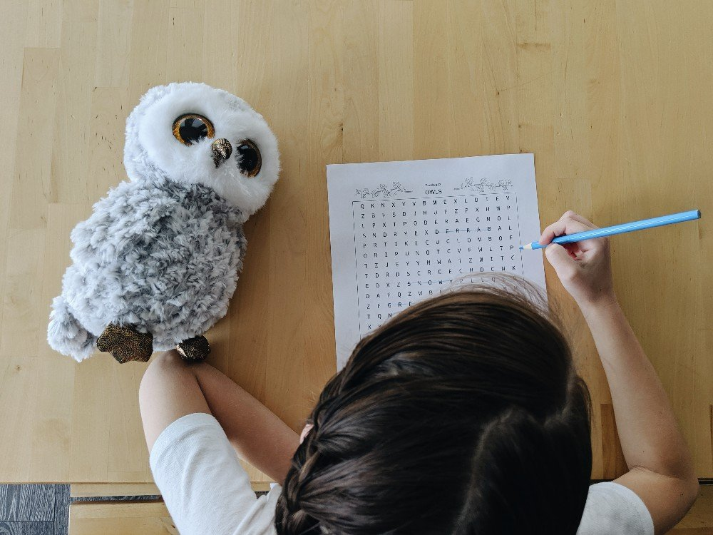 Free Owl Unit Study Resources
