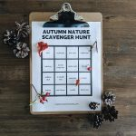 Fall Nature Study Ideas & A Free Autumn Nature Scavenger Hunt Printable