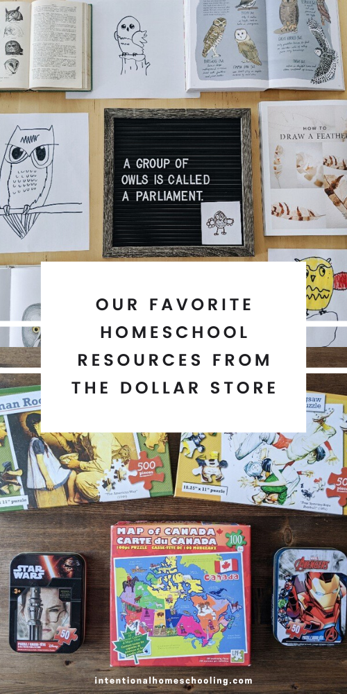 Dollar Store Homeschool Resources Haul