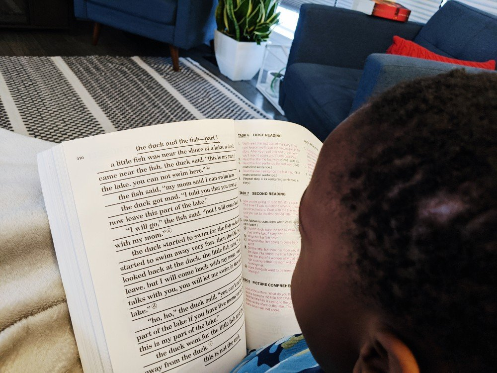 Teach Your Child to Read in 100 Easy Lessons - Homeschool Week in Review
