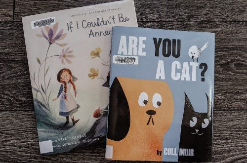 The Best Picture Books of 2020 - so far! Great picture books to read with kids