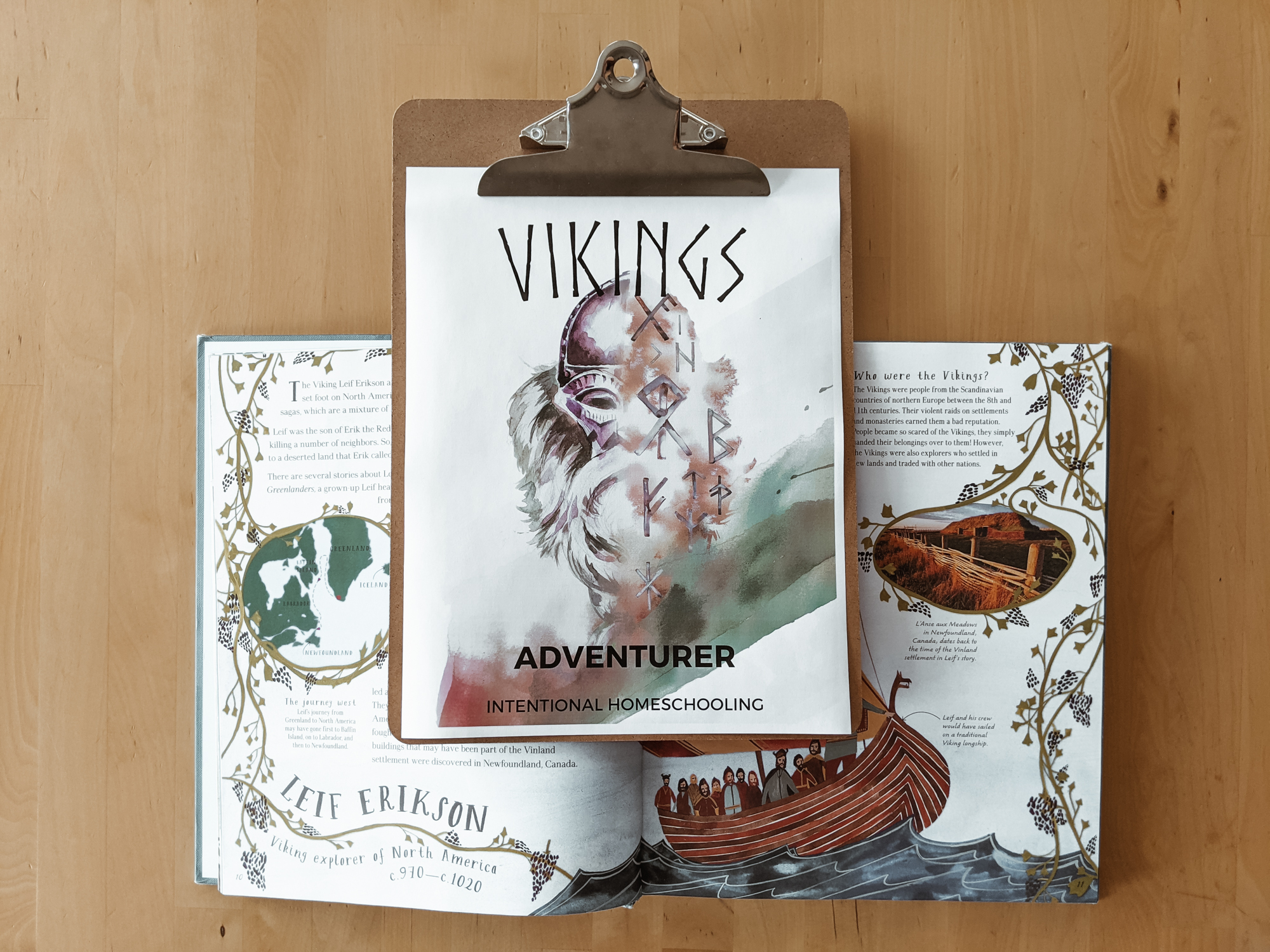 Free Vikings Unit Study - a great unit for your elementary homeschool